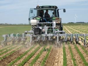 «Production intégrée légumes : acquis et perspectives de six années d'expérience»