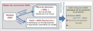 figure 1 consortium AMG