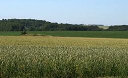 Commission Ressources du pôle de compétitivité Industries et Agro-Ressources (IAR)