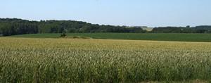 Évaluation opérationnelle des systèmes agricoles