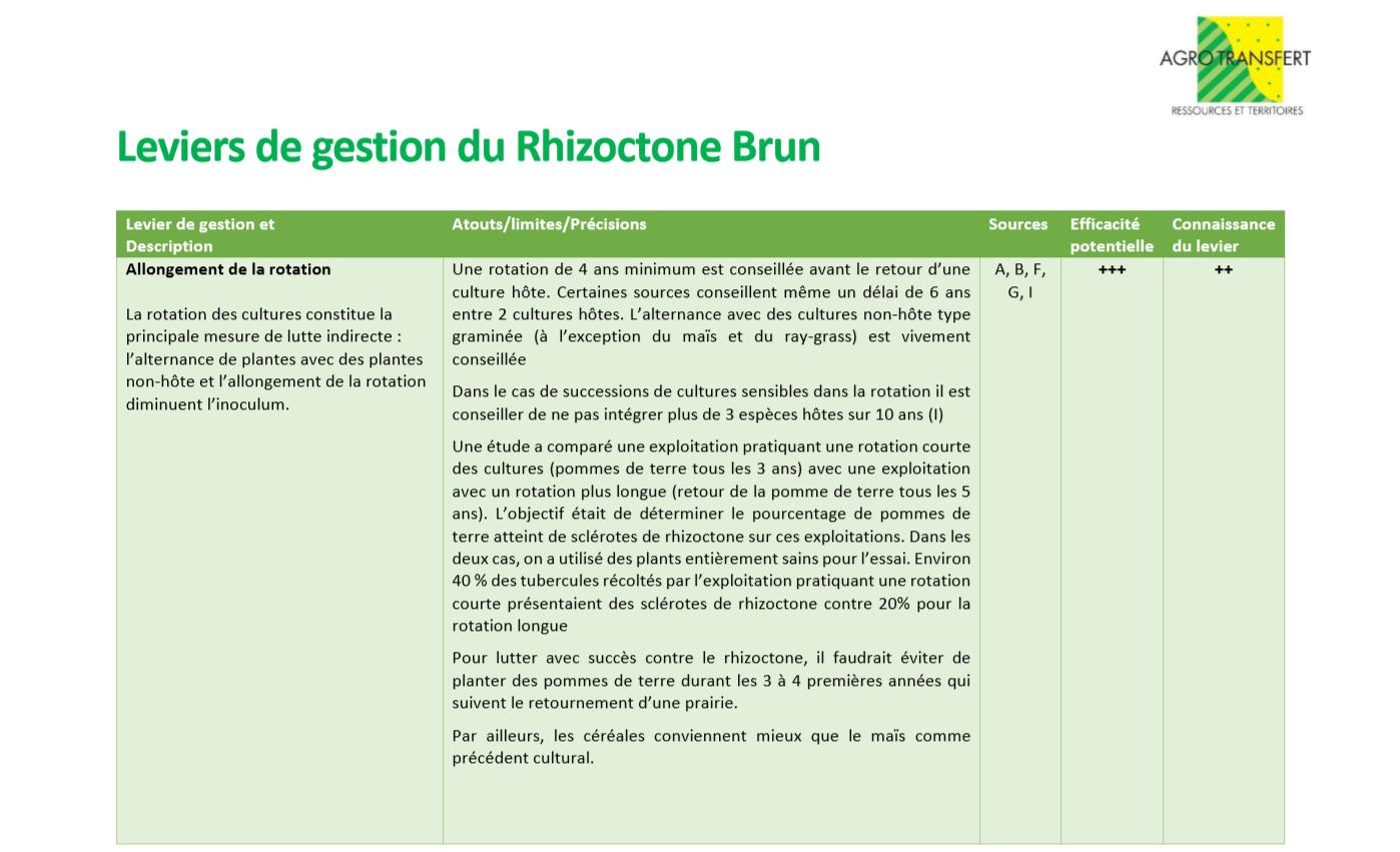 Leviers de Gestion rhizoctone 1