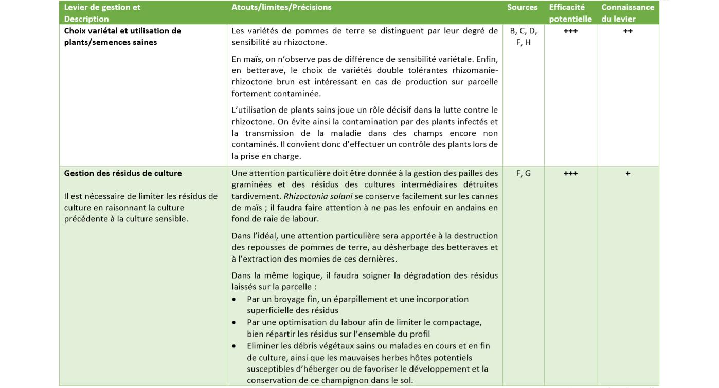 Leviers de Gestion rhizoctone 2