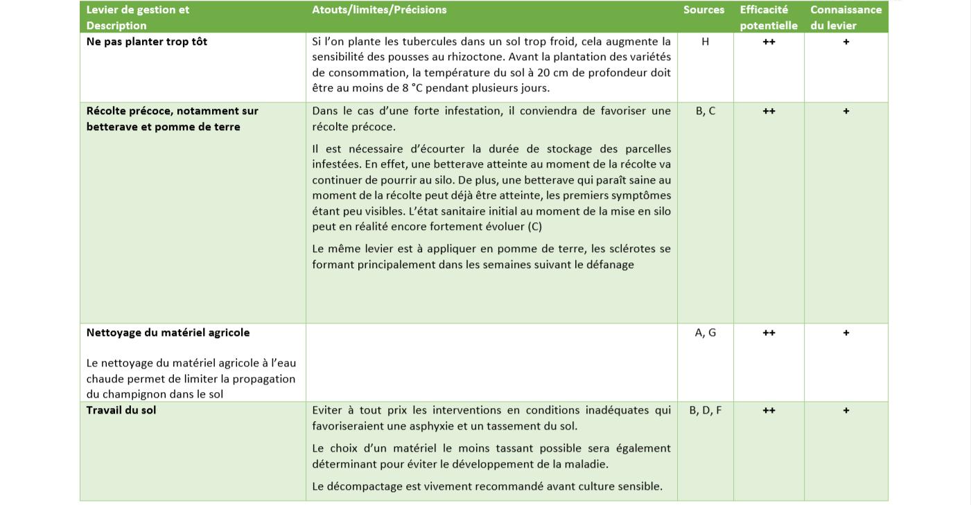 Leviers de Gestion rhizoctone 4