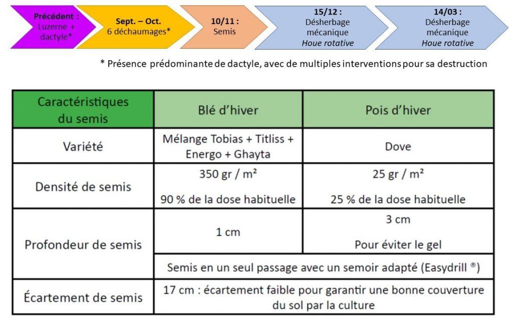 Itinéraire technique de l'association Blé - Pois