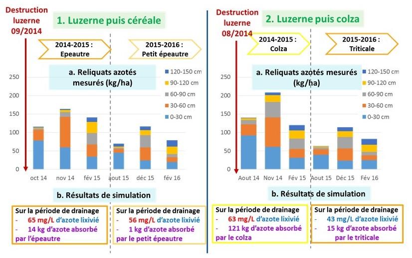 Résultats du projet ENBIO sur les flux d'azote après luzerne - comparaison de cas