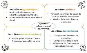 Critères de la durabilité étudiés dans VivLéBio