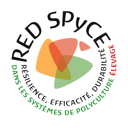 Red Spyce