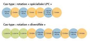 les 2 types de SDC LPC bio étudiés
