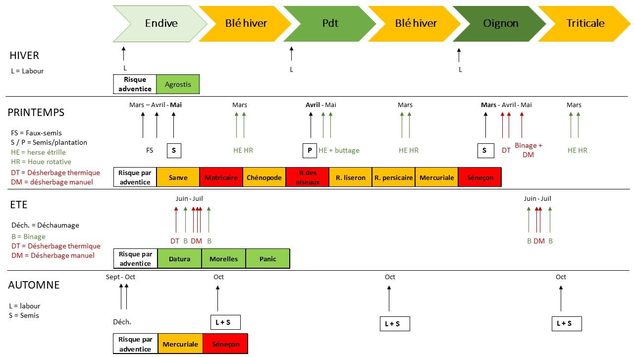 Decription et valuation d'une stratégie de gestion des adventices annuelles