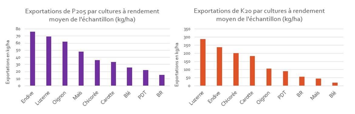 Exportations P et K moyens des cultures de srotations enquetees